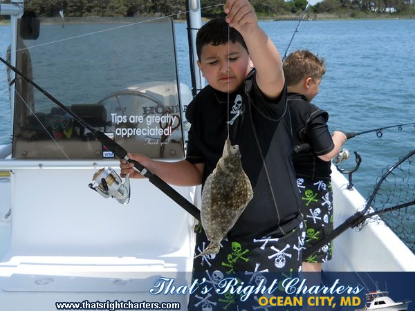 11-06-06-web-flounder-ucky-1