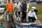 11-06-05-web-tuna-mako-shark