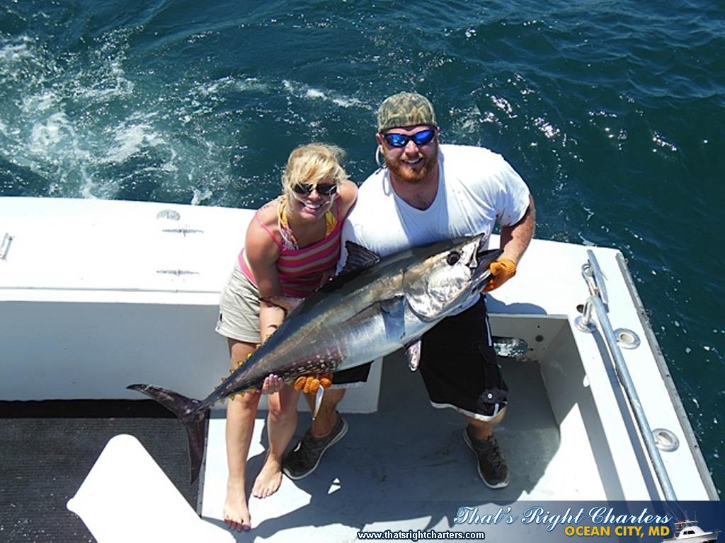 Oc md tuna season specials group fishing charters for Tuna fishing season