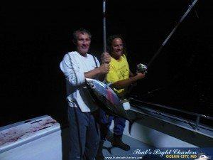 yellowfin 2