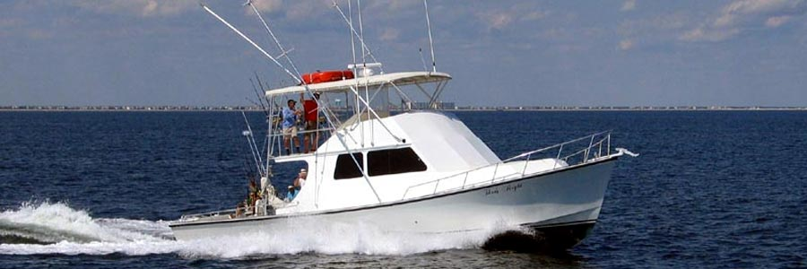 Ocean city maryland charter boats group fishing charters for Ocean city fishing charters