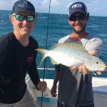 November Islamorada fishing. Snappers