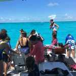 Islamorada and dry tortugas fishing report