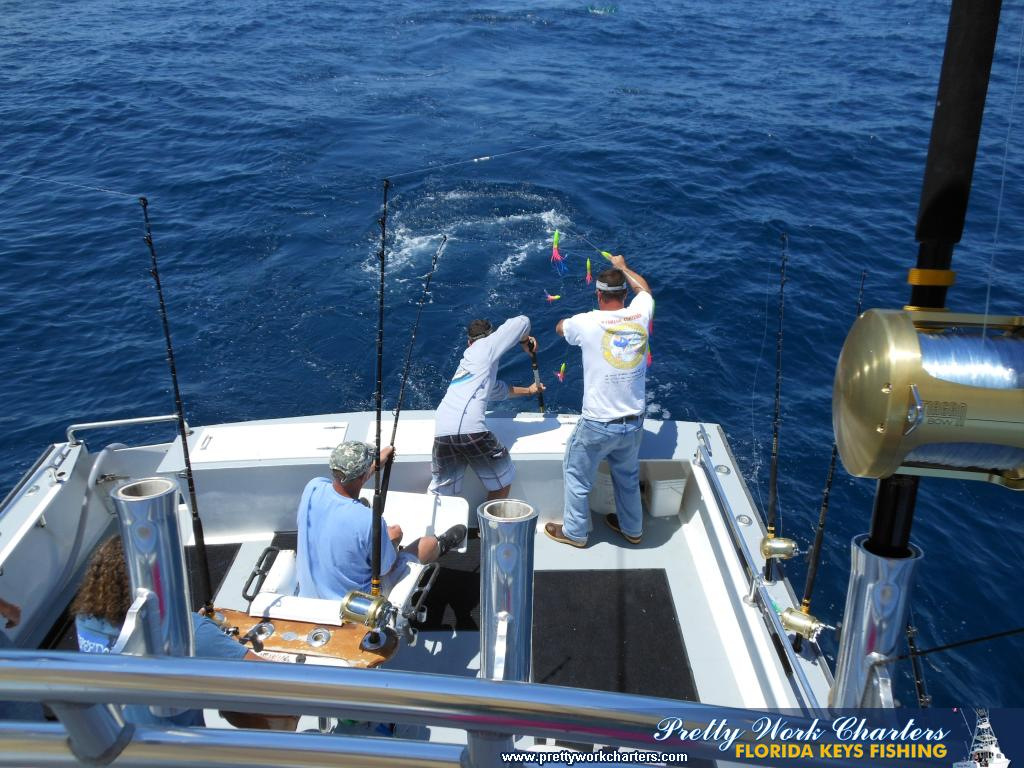 Ocean city maryland tuna fishing pictures group fishing for Fishing in md