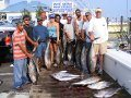 yellowfin-tuna-ocean-city-3