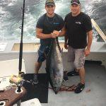 OCMD bluefin