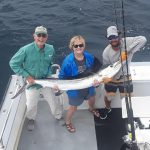 Ocean city white marlin