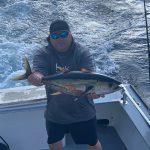 OCMD yellowfin